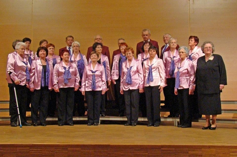 Mešani pevski zbor Društva upokojencev Cerkno